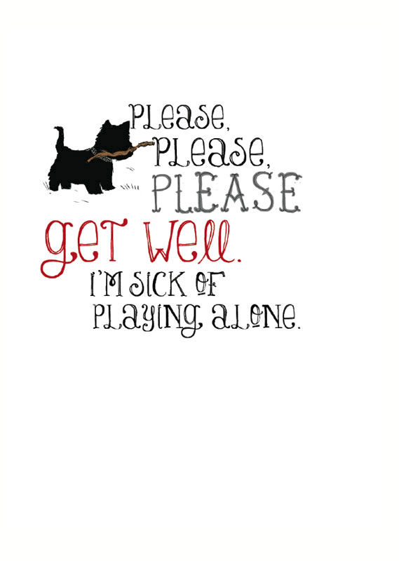 buy get well soon cards online collection