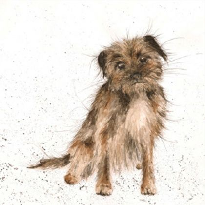 Border,Terrier,Blank,Greetings,Card,buy dog greetings cards online, terrier birthday card, border terrier card, buy dog cards online, cards with dogs, dog birthday card, birthday cards with dogs, lovely dog card