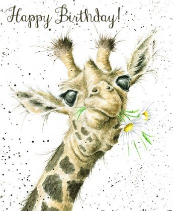 Giraffe,Birthday,Flowers,Card,buy giraffe birthday cards online, giraffe birthday cards for her, buy birthday cards online for her, girls birthday card, female birthday card, birthday cards for females, ladies, cards with giraffes, birthday flowers card,