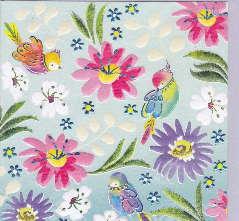 Birds flowers blank greetings card karenza paperie m4hsunfo