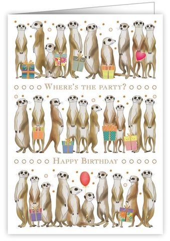 Meerkats,Where's,The,Party?,Birthday,Card,buy meerkat birthday cards online, buy birthday cards with meerkats online, wheres the party birthday cards, birthday cards for him with meerkats, birthday cards for her with animals