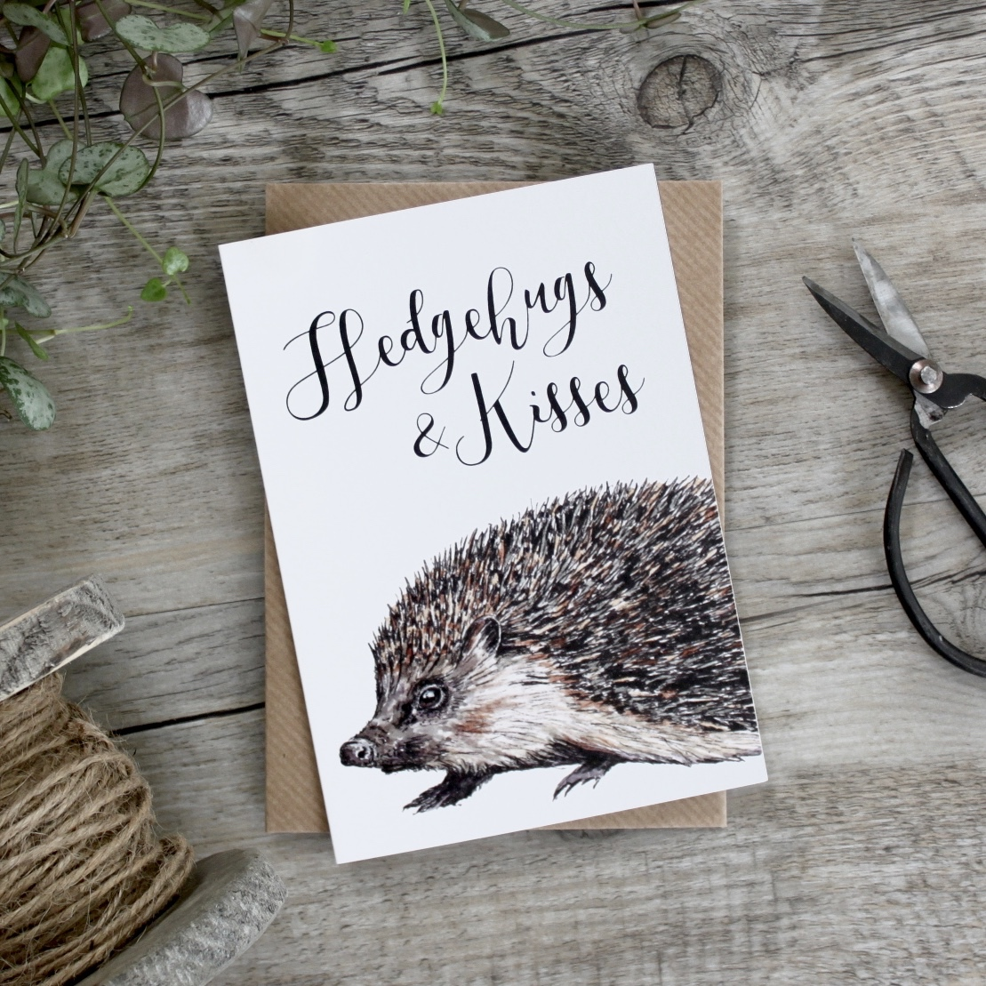 buy hedgehog cards online from karenza paperie