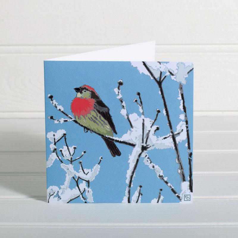 Pack Of Little Winter Bird Christmas Cards - Emily Burningham ...
