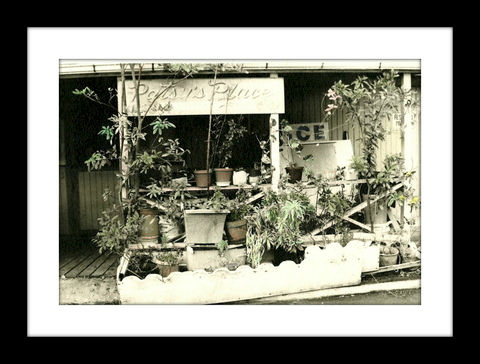 Patsy's,Place,hand colored photography,Hand colored photographs, hand colored photography  artists, Hand colored photo, Hand tinted photographs, St. Thomas USVI
