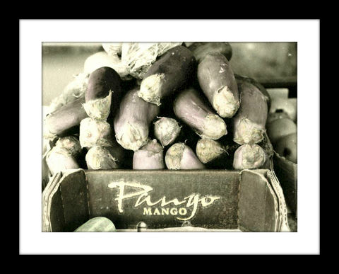 Eggplant,hand colored photography,hand colored photographs, hand colored photography  artists, Hand colored photo, Hand tinted photographs, St. Thomas USVI