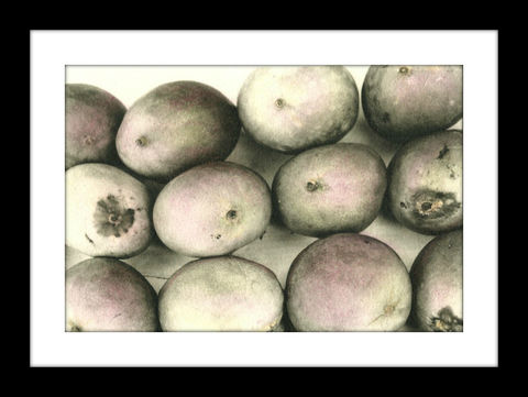 Mango's,hand colored photography,Hand colored photographs, hand colored photography  artists, Hand colored photo, Hand tinted photograph, St. Thomas USVI