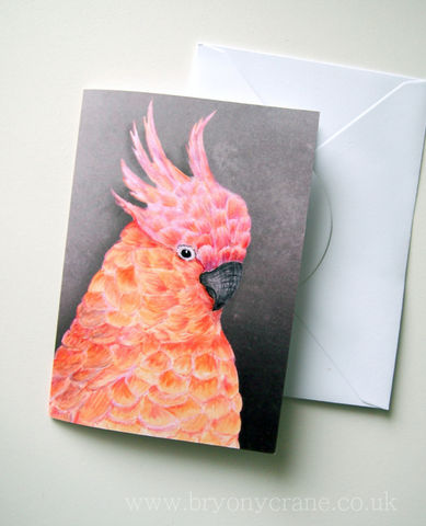 Illustrated,Greetings,Card,-,Cockatoo,Art,Illustration,greetings_card,birthday_card,thank_you_card,illustrated_cards,illustration,bird,cockatoo,cockatiel,parrot,bird illustration,stationery,art_card,greeting_card,card,white_envelope,300gsm_card_stock