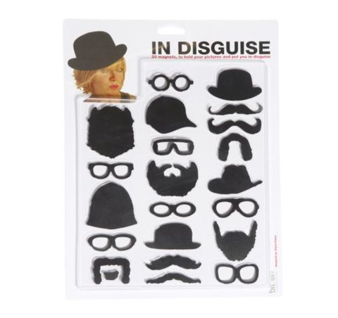 Photo,Disguise,Magnet,set,by,Sass,&,Belle,Photo Disguise Magnet set by Sass & Belle