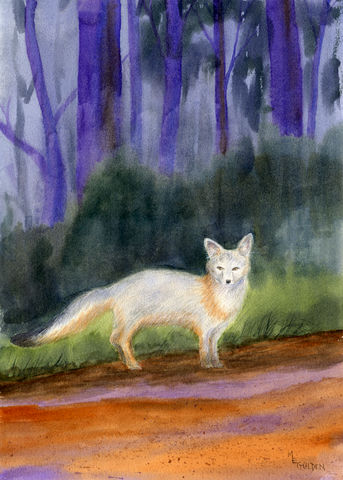 The,Fox,art, watercolor, fox, giclee print, twilight, dusk, animal