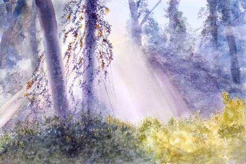 Winter,Light,Forest Home decor, early light, white light, greens, purples, watercolor giclee, rays of light