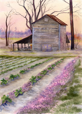 Rose,Hill,Barn,original,watercolor,Tobacco barn, Rose Hill, sunset barn, farm scene, Landscape barn, January afternoon