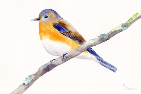 Bluebird, watercolor bluebird, songbird, blue, rust, bird home decor, Mary Ellen Golden