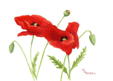 Small,Poppies,2,Art,Print,Giclee,watercolor,giclee_print,flowers,poppies,cards,red,paper,ink