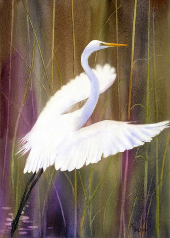 Taking,Flight,from,the,marsh,Art,Print,Giclee,painting,watercolor,egret,flight,seashore,bird,white,beach_painting,marsh_painting,paper,ink