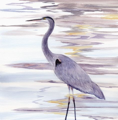 Quiet,Reflections,Art,Print,Giclee,painting,landscape,watercolor,bird,blue_heron,reflections,seashore,wweteam,justbeachy_team,paper,ink