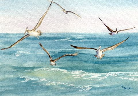Following,the,Ferry,five,pelicans,giclee,print,Art,Print,Giclee,watercolor,seashore,ocean,pelican,ocracoke,online_art_gallery,beach_painting,ferry,cedar_island,fishing,seascape,watercolorpaper,ink