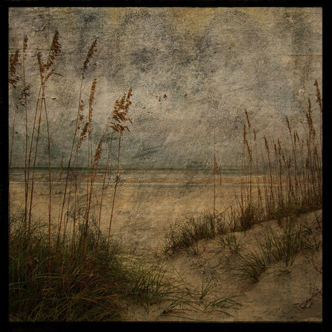 Seascape,Photography,-,Masonboro,Island,No.,2,8,in,x,Altered,Photograph,Art,Nature,surreal,digital,brown,texture,moody,sea_oats,dune,ocean,seaside,green,seascape_photography,paper,ink