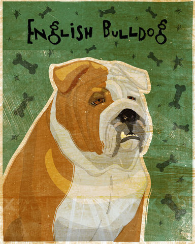 English,Bulldog,Print,8,x,10,Art,Illustration,digital,whimsical,cute,dog,animals,animal,red,english_bulldog,paper,ink