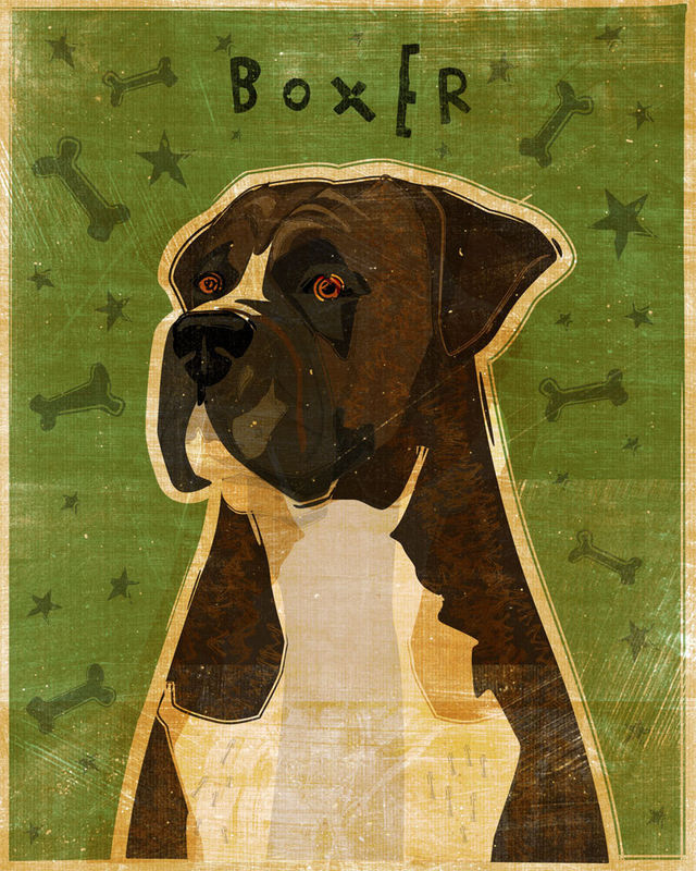 Boxer Dog Art - Brindle - Print 8 in x 10 in - The Golden Gallery