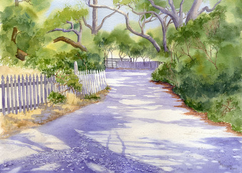 Lawton,Lane,on,Ocracoke,Island,giclee,print,oyster shell road ×  shadows ×  picket fence × giclee print ×  coastal beach decor × watercolor landscape ×  Ocracoke Island × live oak trees ×  Lawton Lane