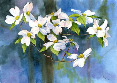Tree,of,Faith,Watercolor,Original,art,  watercolor original,floral,flowers,dogwood blossoms, nature, dogwood tree,spring