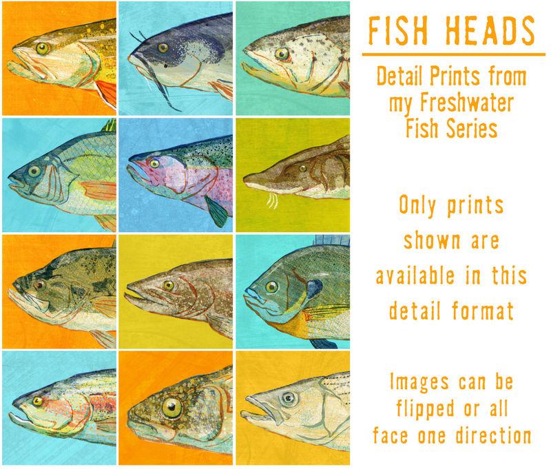 Fish Heads - Freshwater Fish Art Series Set of 4 Art Blocks - 12 in ...