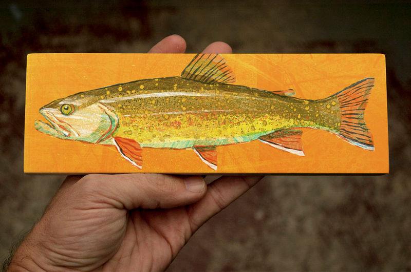Freshwater Fish Art Series Medium Art Block - Brook Trout Art Print ...