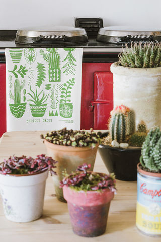 Curious,Cacti,tea,towel,curious cacti tea towel, screen printed, tea towel, hand printed, green, kitchen, textiles, homeware,