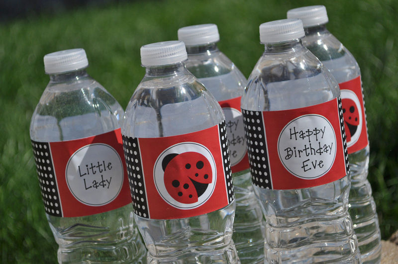 10 water bottle labels ladybug baby shower or birthday party decorations product