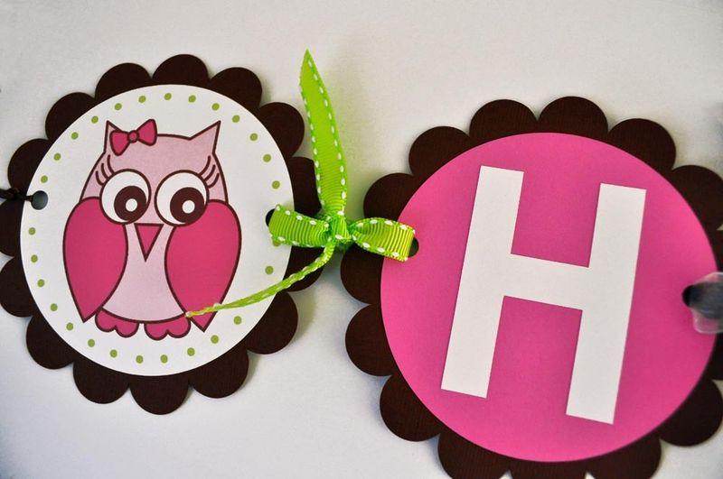 Girl Owl Birthday Banner Girls Birthday Decorations Woodland