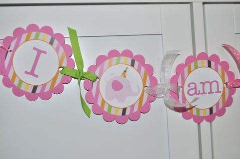 Highchair,Banner,-,1st,Birthday,Elephant,and,Giraffe,Stripes,birthday banners, decoration, baby shower banner, 1st birthday banner, happy birthday banner, party sign, personalized party, girls birthday party, birthday banner, party decorations, girls birthday ideas, party banner