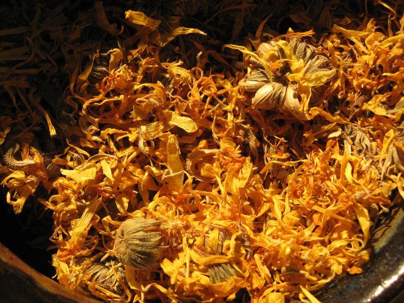 Calendula Flowers Calendula Officinalis Pot Marigold