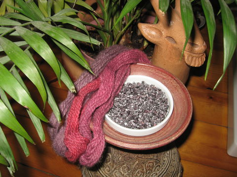 Cochineal,Natural,Dye,,Whole,Insects,,Dactylopius,coccus,natural dyeing , cochineal,  Dactylopius coccus, carmine, natural dye, insect dye, red natural dye,cochineal dye, cochineal insects , red cochineal, whole cochineal, food coloring, natural dye insect , BrushCreekWoolWorks, Brush Creek Wool Works
