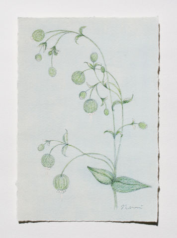 Postcard,Green,Bell,postcard, paper, original design, illustration, green bell, art nouveau, Japanese, coloured pencils, flower