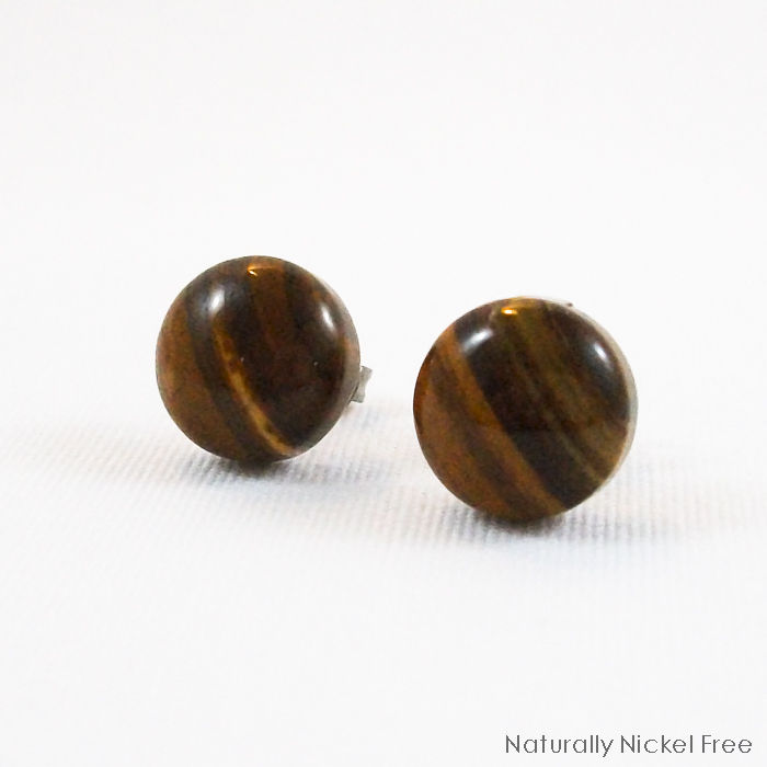 Iron Zebra Jasper Titanium Post Earrings - product image