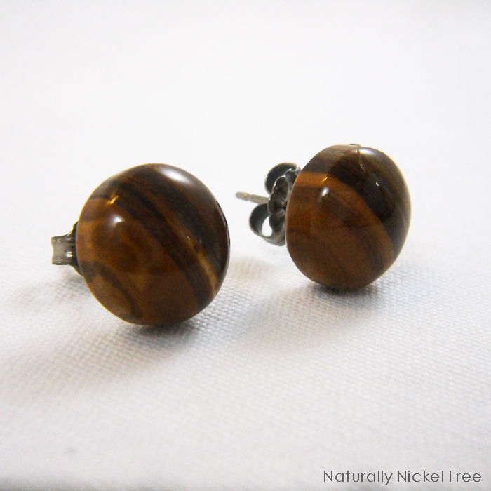 Iron Zebra Jasper Titanium Post Earrings - product images  of