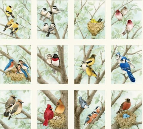 Beautiful,Birds,by,Tracy,Lizotte,for,Elizabeth's,Studio,Elizabeth's studio fabrics,tracy lizotte,beautiful birds,quilting,sewing,clothing,yard goods,fabric
