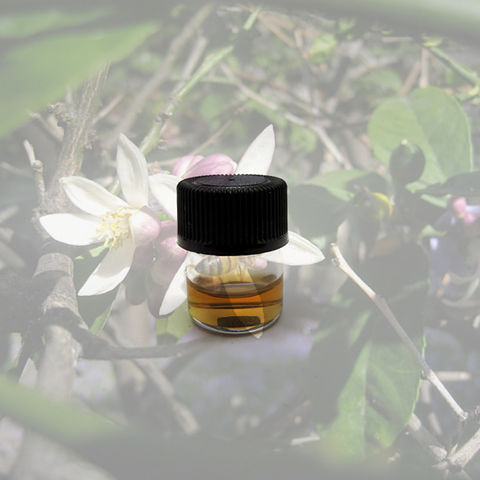 For,the,Love,of,Bees,Natural,Perfume,Sample,Bath_and_Beauty,Fragrance,floral,vanilla,honey,ylang_ylang,chamomile,honeysuckle,black_current,bee,natural_perfume,honey_perfume,vanilla_perfume,perfume_sample,sample