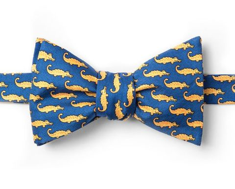 Mini,Alligators,Bow,Tie,Alligators Bow Tie