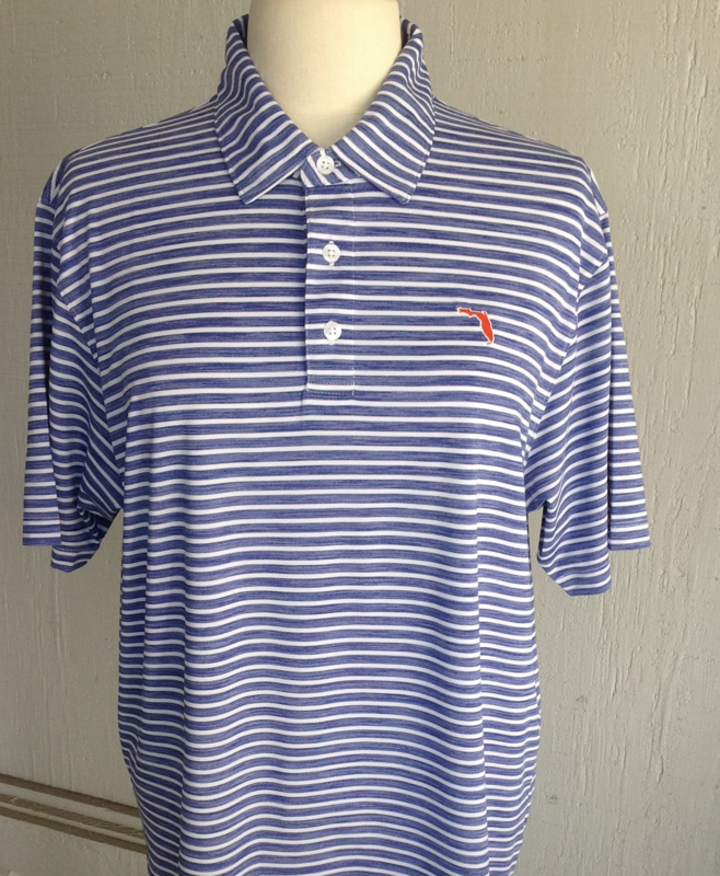 Blue Stripe Polo - product image