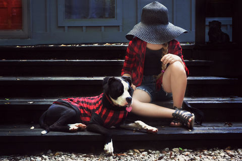 Red,and,Black,Plaid,Dog,Shirt-,Dogs,Tshirt,Dog shirt, dog tshirt, Pet clothes