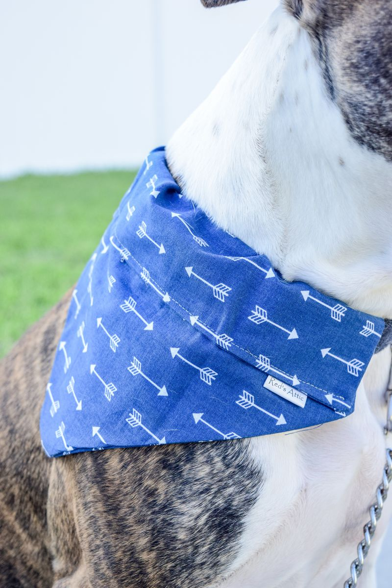 Dog bandana - Blue Arrows - product images  of