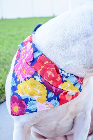 Dog,bandana,-,Multi-Color,Floral,dog scarf,sweater,pet accessories, pet clothing, bandanas