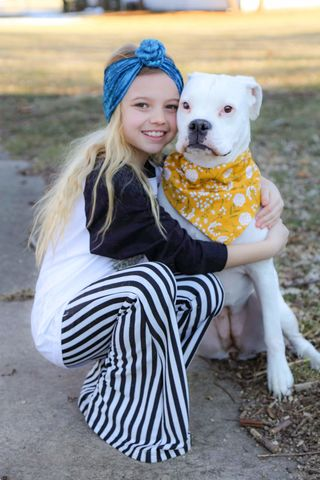 Dog,bandana,-,Mustard,Floral,dog scarf,sweater,pet accessories, pet clothing, bandanas