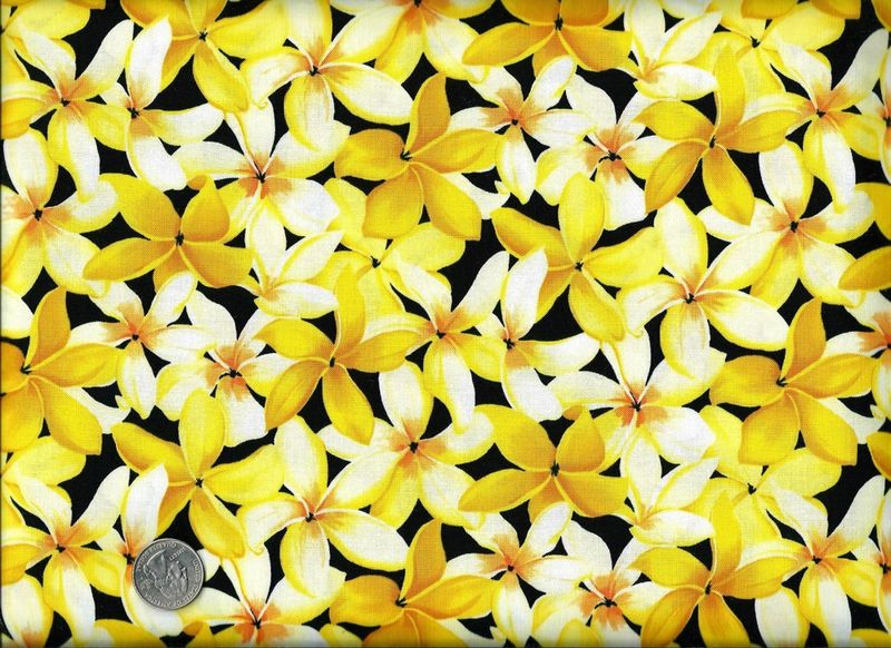 Cotton Quilt Fabric In Paradise Yellow And Black Floral  - product image