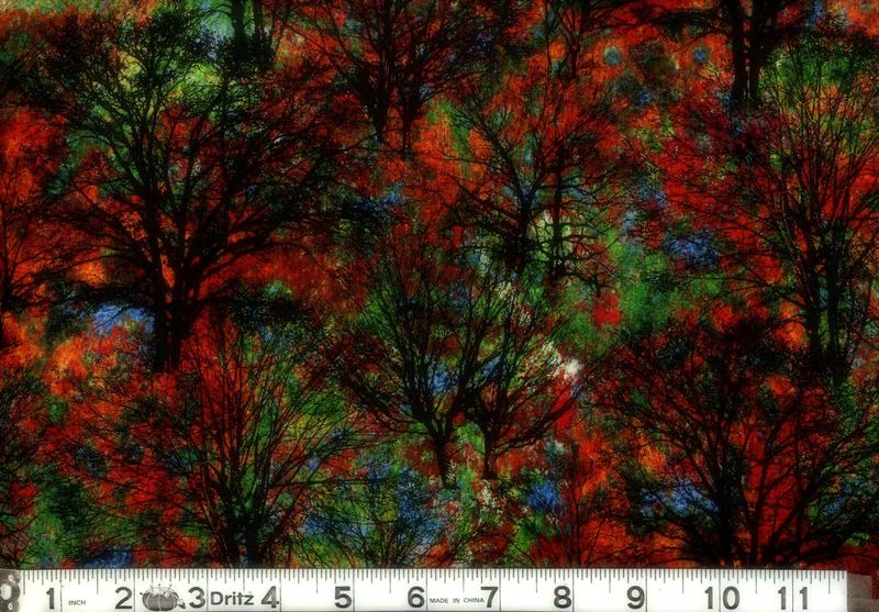 Cotton Quilt Fabric Marblehead North Woods Trees Multi Black  - product image
