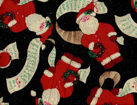 Cotton Quilt Fabric Christmas Checking Santa's List Black Multi  - product images  of