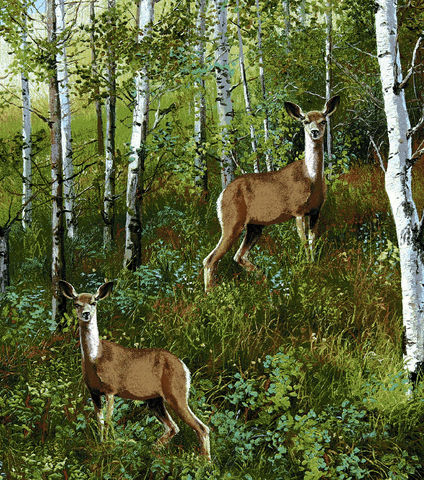 Cotton,Quilt,Fabric,Flannel,Realistic,Deer,in,Woods,,quilt backing, dresses, quilt fabric,cotton material,auntie chris quilt,sewing,crafts,quilting,online fabric,sale fabric