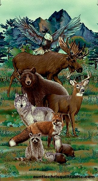 Cotton Quilt Fabric Woodland Wonders Animals Spruce Panel Studio E - product images  of