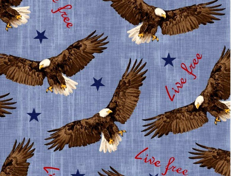 Cotton Quilt Fabric Live Free Flying Eagle Patriotic Red White Blue - product images  of